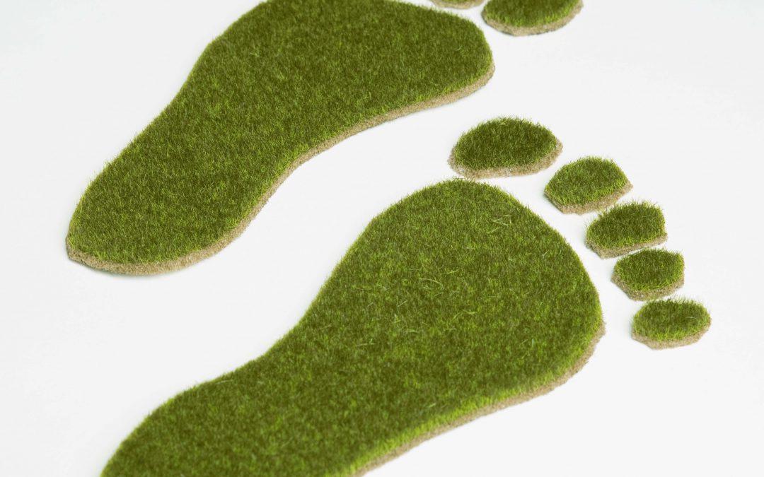 Meno gas serra, più energia: l'impronta green di Upgrading Services